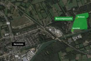 Herentals koopt 11 hectaren grond voor boscompensatie
