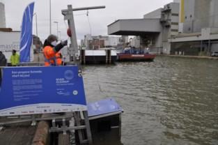 """""""River Skimmer"""" haalt drijvend afval uit dok in Merksem"""