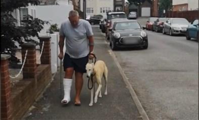 Man gaf meer dan 300 euro uit aan dierenarts, maar hond bleek alleen te hinken uit sympathie