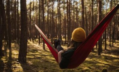 De reistrends voor de komende maanden, volgens Pinterest