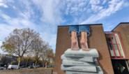 'Best of Belgium' zoekt mooiste streetart kunstwerk van 2020
