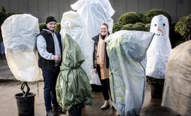 Hoe zorg je dat je planten de vrieskou overleven? 'Winterjassen' voor in je tuin getest