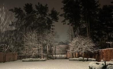 """Sneeuw valt en blijft liggen: """"Het kan gevaarlijk glad worden met sneeuwlaag van enkele centimeters"""""""