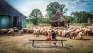 Gratis Bokrijkabonnement voor Limburgse gezinnen in armoede