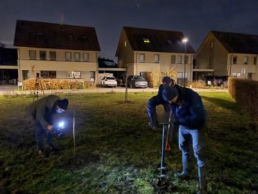 """Mariakerke heeft plots een nieuw 'bosje': """"Bomen planten kan ook heel eenvoudig zijn"""""""