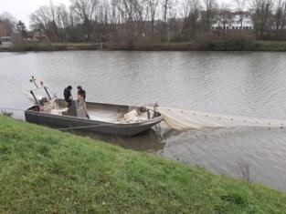 Werken moeten wateroverlast voorkomen en vissen en vogels meer overlevingskansen bieden