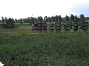 Pagodes verdwijnen uit landschap aan Schoorbeek