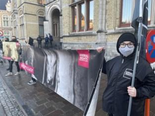 """Na varkensslachthuis ijvert Animal Rights nu voor veroordeling van runderslachthuis met protestactie aan gerechtsgebouw: """"Wij proberen de maatschappij te veranderen"""""""
