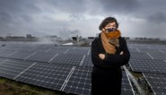 Eigenaars zonnepanelen kunnen vanaf juli overtollige zonne-energie verkopen aan Decathlon