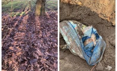 """Koppel doet lugubere ontdekking in tuin: """"We begonnen te graven, en al snel kwam een verschrikkelijke geur ons tegemoet"""""""