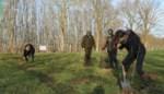 Eigenaars grond krijgen subsidie om bos aan te leggen op hun terrein