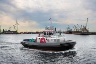 Antwerpen brengt alle initiatieven samen voor verdere uitrol groene waterstof