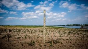 Limburg krijgt provinciale droogtecoördinator