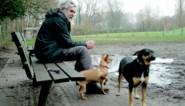 """Parasiet zaait ongerustheid op losloopweide: """"Baasjes moeten hondenpoep opruimen"""""""