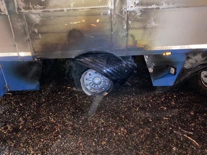 Varkens sterven in vrachtwagen die vuur vat op E19