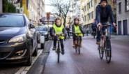 Met kinderen op de fiets door het drukke verkeer: hoe doe je dat het best?