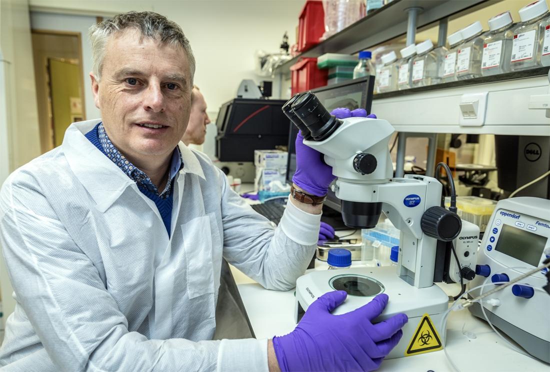 """Viroloog Johan Neyts: """"Vaccineer meest frêle mensen alvast met Pfizer- of Moderna-vaccin"""" - Het Nieuwsblad"""