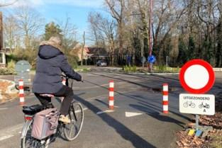Wijkbewoners beslissen over knip Plantinlaan en Veldstraat