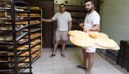 """Vind je het beste Turks brood bij bakkerij Hawin in de Dampoortstraat? """"We bakken bijna de hele dag door"""""""