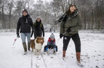 """Meer sneeuw in Vlaanderen dan in Ardennen, en dat is niet het enige uitzonderlijke: """"Negen jaar geleden dat we nog zo'n periode hadden"""""""
