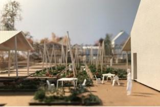 Ketelhoeve moet tegen 2023 landbouwcentrum met lokaal geteelde groenten zijn