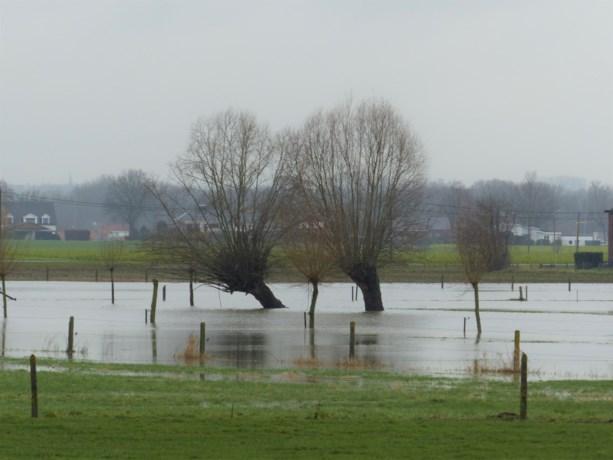 Grondwaterreserves aangevuld door overvloedige regenval van de afgelopen weken