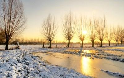 Hoe verwijder je het best sneeuw? Wat als je van de weg raakt? Hoe lang mag je hond buiten? De meest gestelde vragen beantwoord