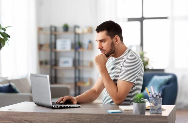 Volledig online stemmen is pas haalbaar in 2034