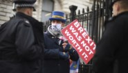 Vijf miljoen EU-burgers vragen verblijfsrecht in Groot-Brittannië na Brexit