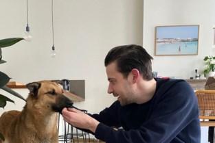 """Hond Lena duikt na avontuurlijke tocht en meer dan honderd meldingen tientallen kilometers van huis: """"Beste Valentijnsgeschenk ooit"""""""