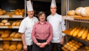 Onze jury stak zich vol pistolets, suissen en taartjes, en maakte zijn keuze: dit is de Beste Bakker van Vlaanderen