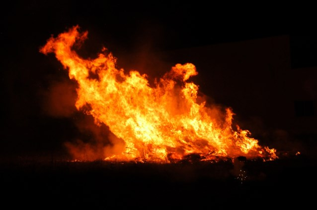 Tweehonderdtal dieren omgekomen bij brand in Waals-Brabant