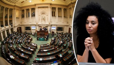 """""""Ze zijn subsidiejunkies geworden"""": ook de partijen zelf vinden dat ze te veel overheidsgeld krijgen, maar kan de geest terug in de fles?"""