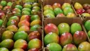 Voedselprijzen gingen in 2020 fors omhoog