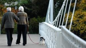 Lage rente ondermijnt pensioenfondsen: steeds meer risico nodig om voldoende rendement te halen