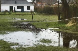 """Omstreden verkaveling opnieuw goedgekeurd, bewoners blijven strijdvaardig: """"Wateroverlast zal alleen maar erger worden"""""""