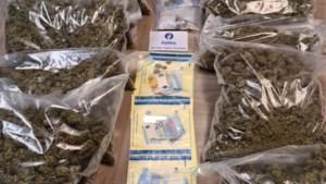 """Brusselse rechter eist uitzonderlijk bedrag voor bende die tonnen cannabis invoerde: """"Aan één leven niet genoeg om dit te betalen"""""""