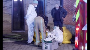 Hulpdiensten reanimeren vier katten bij brand in Diepenbeek