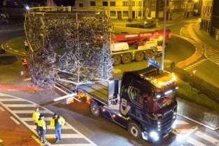 Wielermonument van 4,5 ton verhuisd