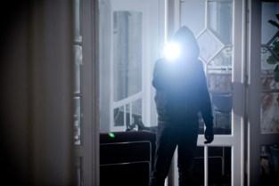 Inbrekers slaan toe in Diepenbeek