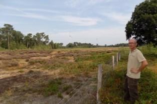 Nieuw plan beheert natuur in Tielenheide en Calievallei