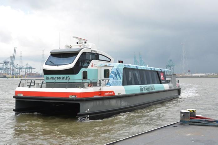 """Ondernemer wil nog dit voorjaar werk maken van watertaxi tussen Temse en haven: """"Alternatief voor file tijdens Oosterweelwerken"""""""