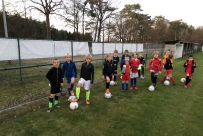 Dieven stelen voor tweede jaar op rij reclamepanelen bij FC Gierle