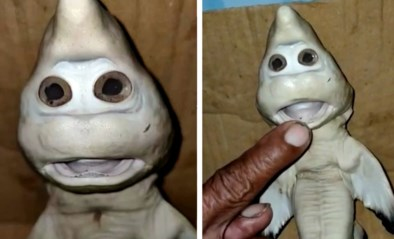 """Gemuteerde haai met 'menselijk gezicht' verbaast visser: """"Denk dat het me geluk zal brengen"""""""