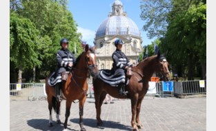 Ruiters moeten paardenvijgen op openbare weg zelf opruimen