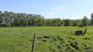 """Protest tegen verkoop OCMW-landbouwgronden: """"Stad Gent mist langetermijnvisie"""""""