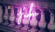 Diet Prada brengt collectie neonlampen voor fashionista's uit