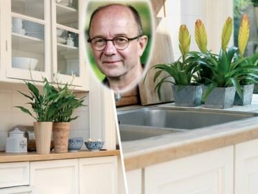 Meer groen in de keuken zonder meteen naar kruidenplantjes te grijpen? Onze groenman geeft tips