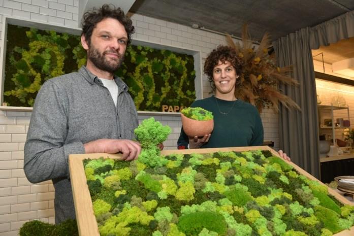"""Stadhuis installeert moswanden van floristen Koen en Saar en meteen schiet vraag de hoogte in: """"Veel groen, weinig onderhoud"""""""