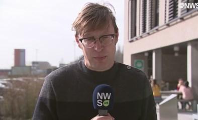 VRT-journalist Koen Wauters krijgt live in de uitzending een wesp op zijn bril, maar houdt zijn hoofd koel